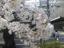 船井総研 上席コンサルタント 福本アキラの「顧客作りのツボ」